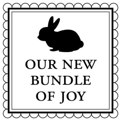 Baby Bundle Stamp Design Clip for Three Designing Women Stampers