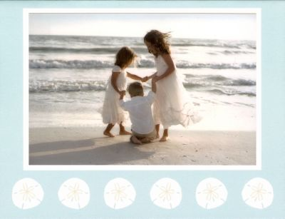 Sand Dollar Folded Digital Photo Card