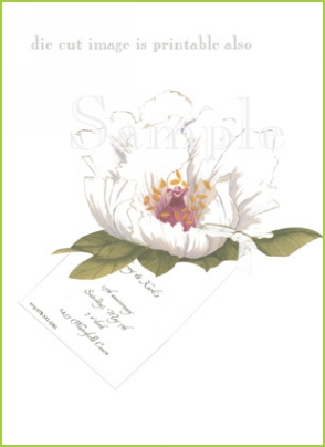 Peony with antique white ribbon tag