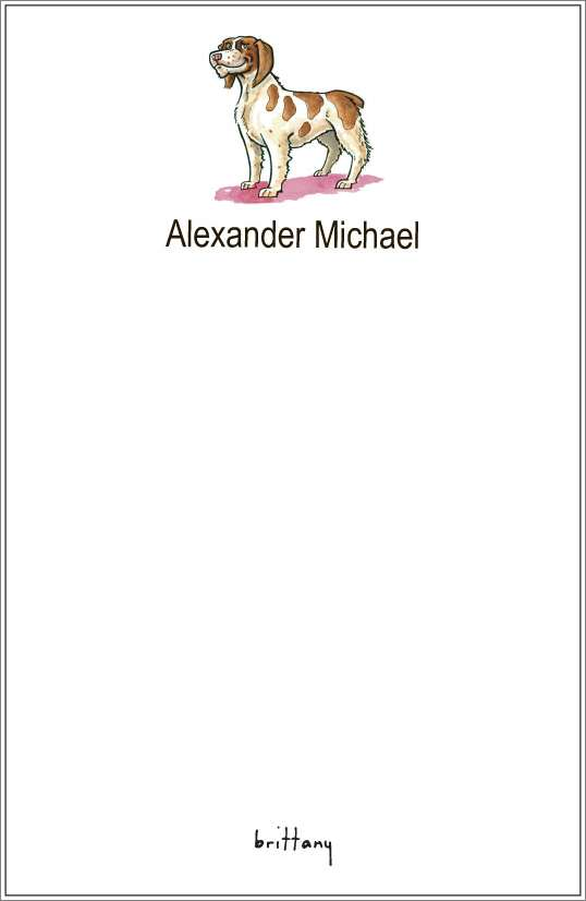 brittany notepad or notesheets in acrylic holder, personalized