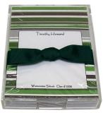 Green and Silver Stripe Discounted Paper by Noteworthy Collections